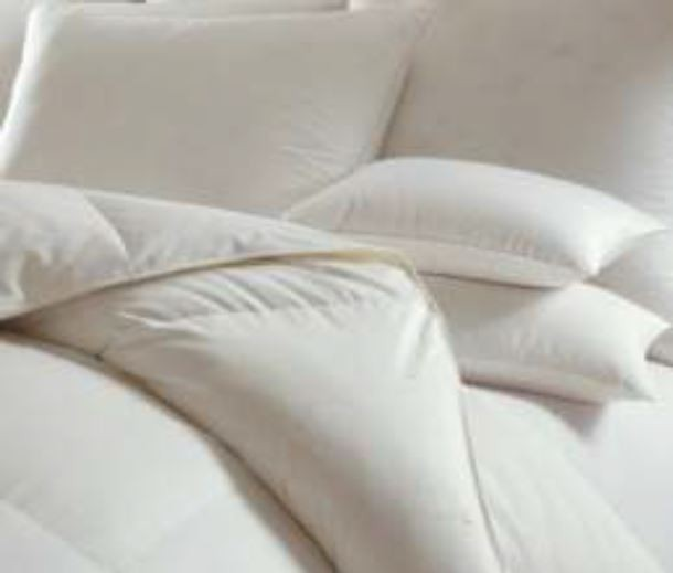 Signoria White Down Duvet Filler (All Season)