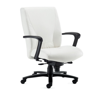Haworth Monaco Large Mid-Back Chair